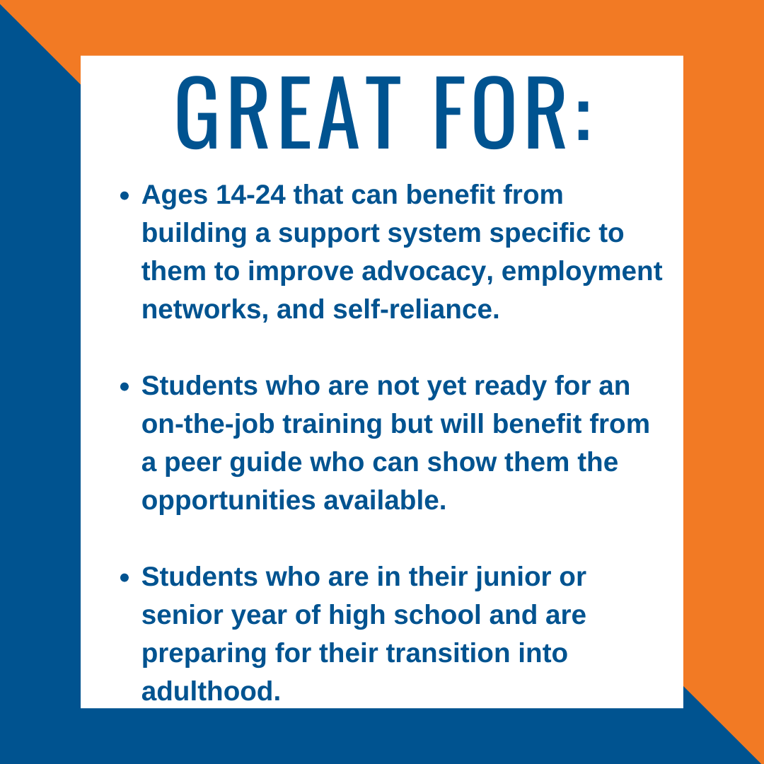 Image of peer mentoring summary