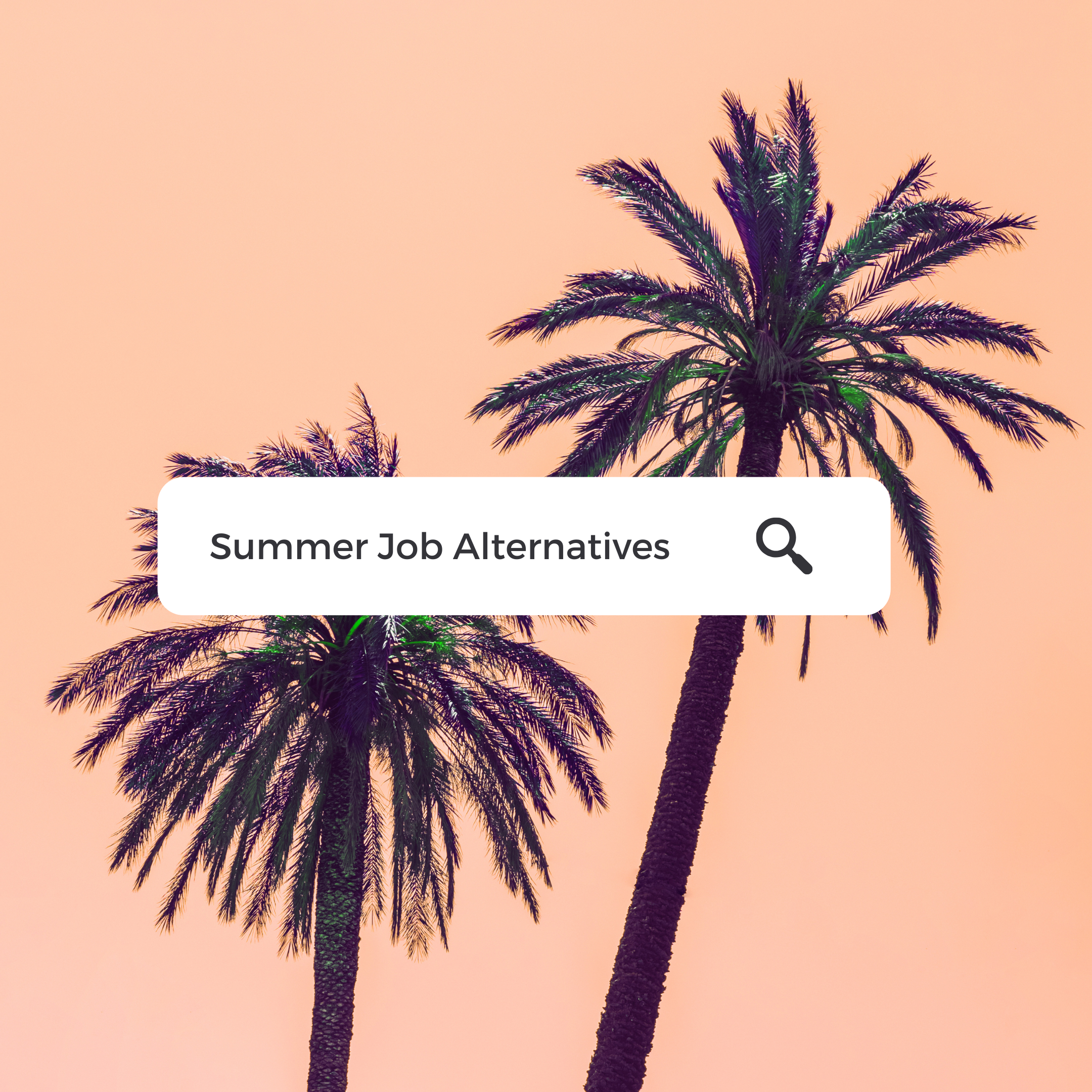 Alternative to Summer Jobs for Students